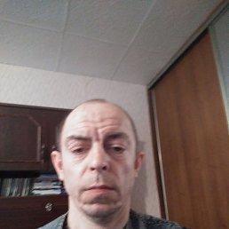 Александр, 45 лет, Калининград