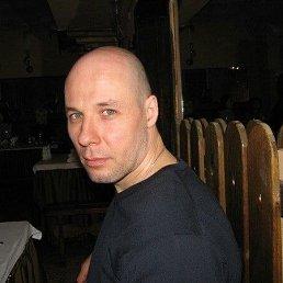 Денис, 48 лет, Санкт-Петербург