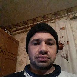 Вован, 38 лет, Белгород