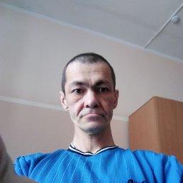 Александр, 44 года, Сарапул