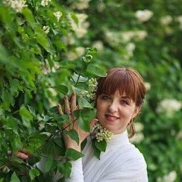 Irina, 37 лет, Ростов-на-Дону