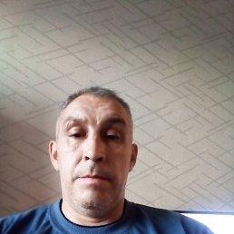 Дмитрий, 44 года, Екатеринбург