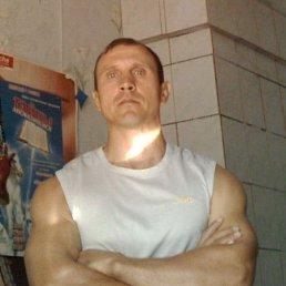 Alex, 50 лет, Славянск-на-Кубани