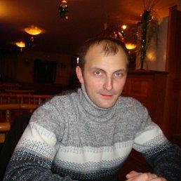 Игорь, 36 лет, Брянск
