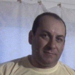 Владимир, 56 лет, Краснодар