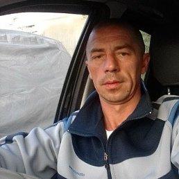 Андрей, 42 года, Сатка