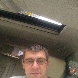 Андрей, 38 лет, Химки