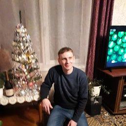 Саша, 31 год, Тюмень