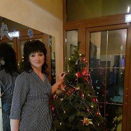 Ольга, 44 года, Санкт-Петербург
