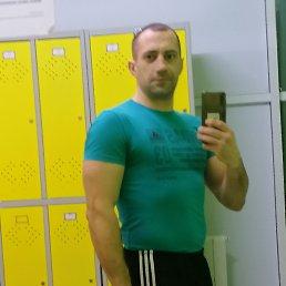 Константин, 34 года, Волгоград