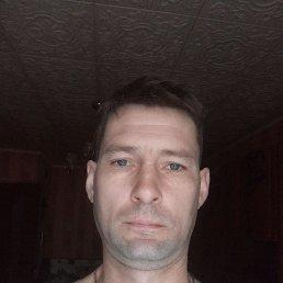 Дима, 41 год, Кострома