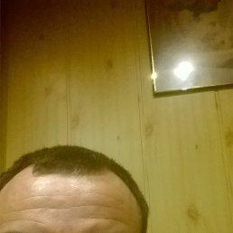 Анатолий, 39 лет, Волоколамск