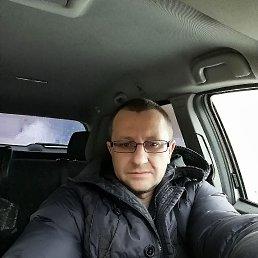 Славик, 41 год, Апрелевка