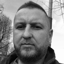 Роман, 37 лет, Подольск