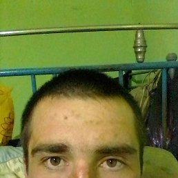 Коля, 23 года, Краснодон