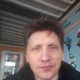 сергей, 43 года, Калининград