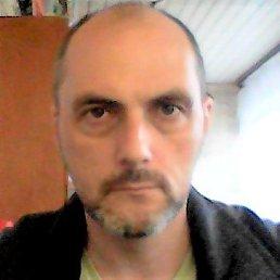 олег, 46 лет, Боровичи
