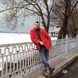 Назар, 29 лет, Золочев