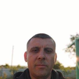 Алексей, 41 год, Павлоград