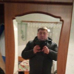 Андрей, 40 лет, Чернигов