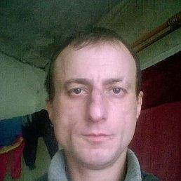 саша, 37 лет, Чернигов