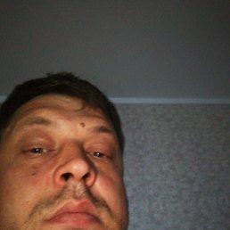 Владимир, 38 лет, Лебедянь