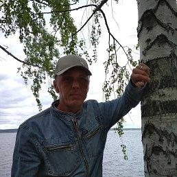 Андрей, 41 год, Ижевск