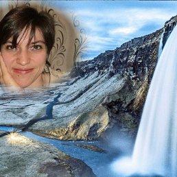 Анна, Новосибирск, 36 лет