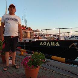 Виктор, 65 лет, Воронеж