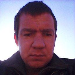 Дмитрий, 35 лет, Москва