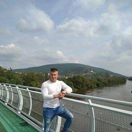 Владимир, 41 год, Запорожье