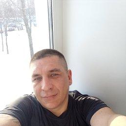 Максим, 38 лет, Ярославль