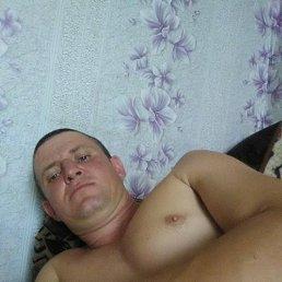 Денис, 34 года, Красный Кут