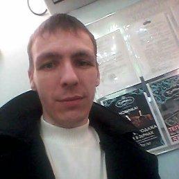 Artyom, 29 лет, Петропавловск