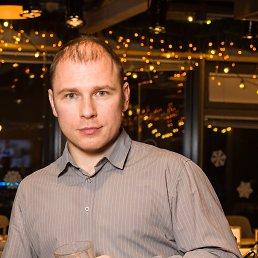 Алекс, 41 год, Внуково