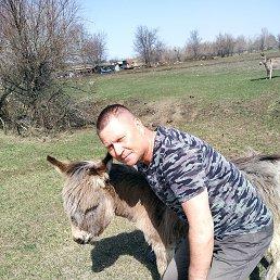 Владимир, 49 лет, Саратов