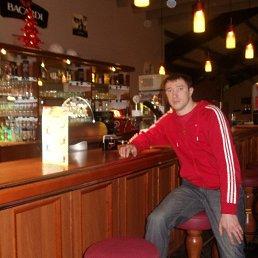Денис, 32 года, Белгород