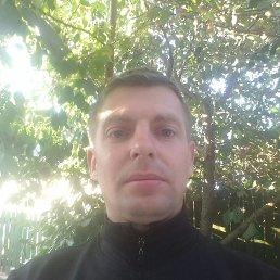 Иван, 37 лет, Изюм