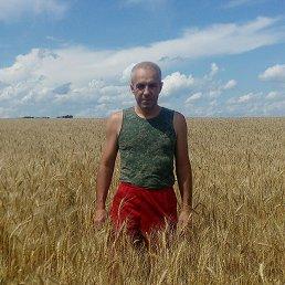 Евгений, 45 лет, Бийск