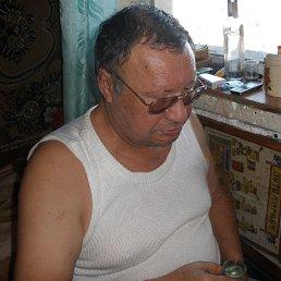 Николай, 68 лет, Киев