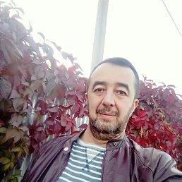 Narik, 50 лет, Тверь
