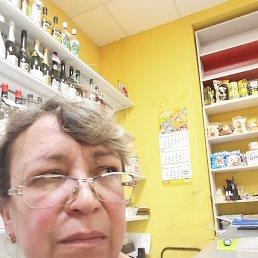 Елена, 55 лет, Дмитров