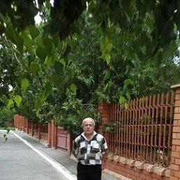 Алексей, 65 лет, Молодогвардейск