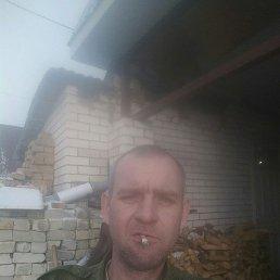 Алексей, 38 лет, Ульяновск