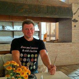 Андрей, 42 года, Видное