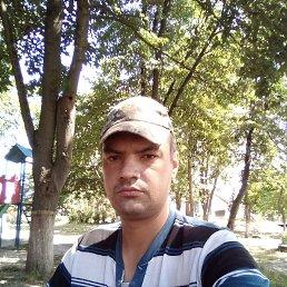 Сергий, 29 лет, Борисполь