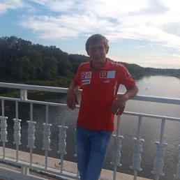 Андрей, 45 лет, Всеволожск