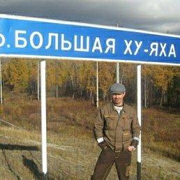 Сергей, 44 года, Тюмень