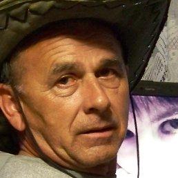 Виталий, Киев, 68 лет