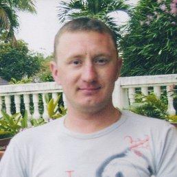 Алекс, 37 лет, Наро-Фоминск